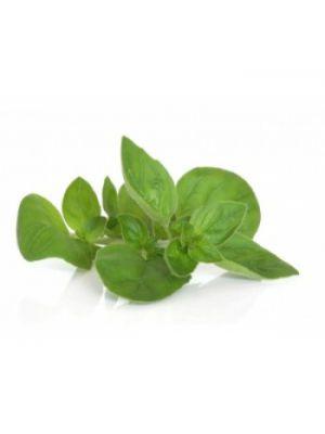 Maghiran verde