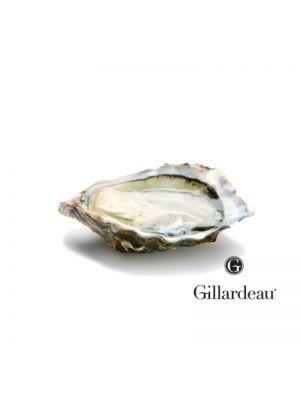 Stridii Gillardeau n°3, 24 buc